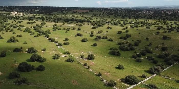 Impianto biogas: il Tar chiede chiarimenti all'Arpa e a Modica